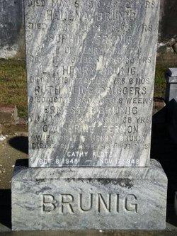 Ernest George Brunig