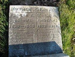 George M Andrews
