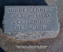 Aubrey Ernest Aeschliman