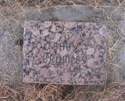 Vera Brumley