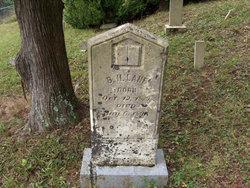 Benjamin Harris Lane, Jr