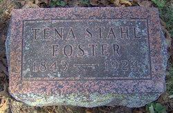 Tena <i>Stahl</i> Foster