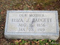 Eliza Jane <i>Davis</i> Badgett