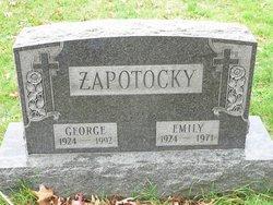 Emily J Zapotocky