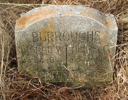 Olive C. Burroughs
