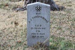 Andrew Jackson Throneberry