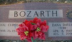 Dana Dayle <i>Tubb</i> Bozarth