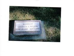 Georgia Ann <i>Elstun</i> Monroe/Wilson