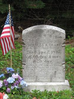 Charles A Grant