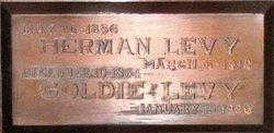Herman Levy