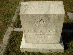 David Harrison Adams