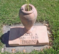 Demas Adam Horn