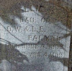 Nellie E. Palmer
