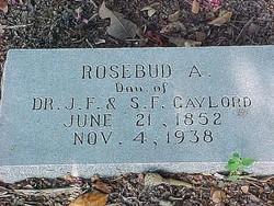 Rosebud A Gaylord