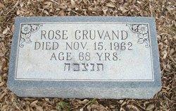 Rose <i>Tapman</i> Cruvand
