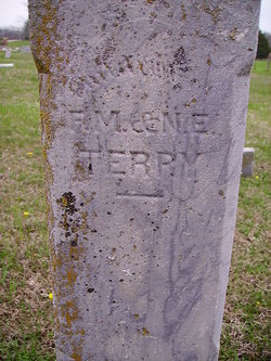 Francis S Terry