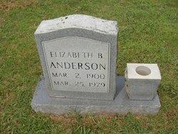 Elizabeth B Anderson