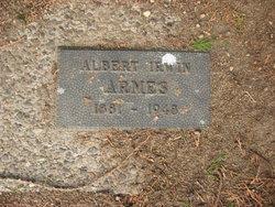 Albert Irwin Armes