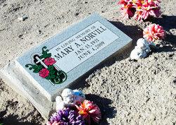 Mary A Norvill