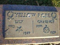 Chauncy Yellow Robe