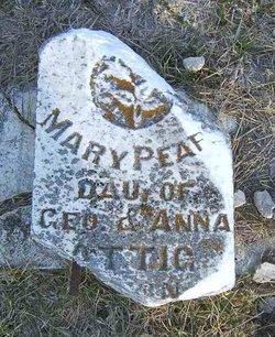 Mary Pearl Attig