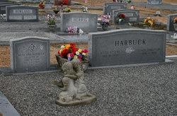 Reta Ann Harbuck