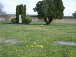 Alice May <i>Waters</i> Purdy