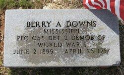 Berry Allen Downs