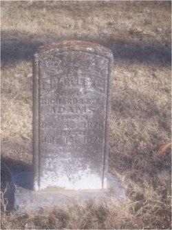 Charles Linley Adams