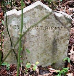 Alexander F Foreman