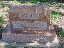 Feriba <i>Fly</i> Clay