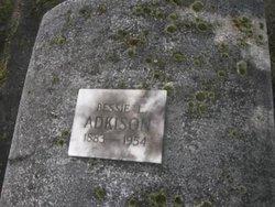 Bessie Lee <i>Brown</i> Adkison