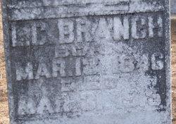 Levin Coe Branch