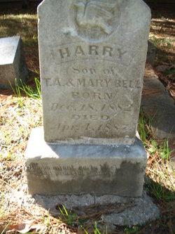Harry Bell
