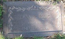Erna N Essig
