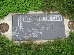 Gelener Odeal <i>Peck</i> Clay