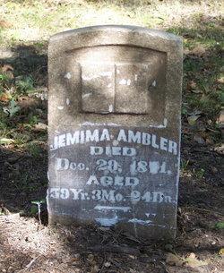 Jemima <i>Van Cott</i> Ambler