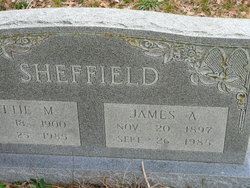James Allen Sheffield