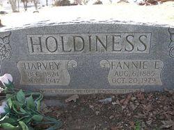 Harvey Holdiness