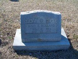 Mary E Holland