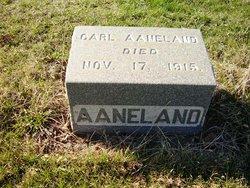 Carl Aanland