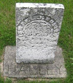 Ismmel J Halley