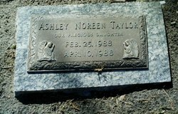 Ashley Noreen Taylor