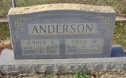 Lillie M Anderson