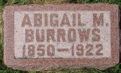 Abbie Minnette <i>Burr</i> Burrows