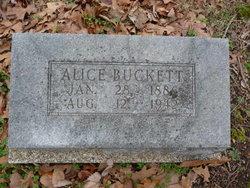 Alice <i>Fields</i> Buckett