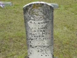 Alice Lillian <i>Bernette</i> Amos