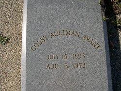 Cosby <i>Aultman</i> Avant
