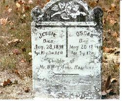 Jessie Hawkins