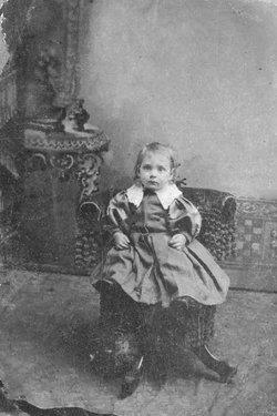 Harry Edward Condie